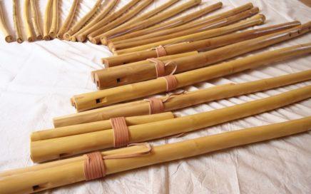 varieties of overtone flutes